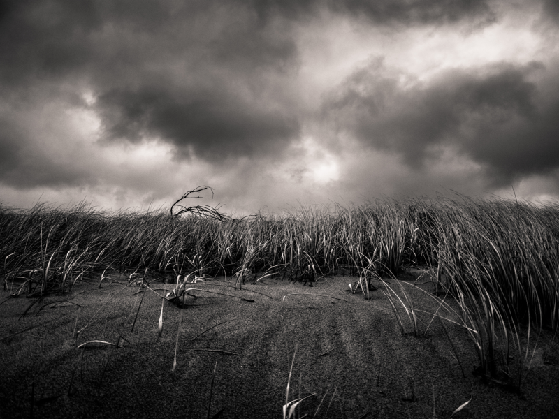A moody black and white image of a desolate field and stormy sky